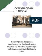 psicomot_laboral-2