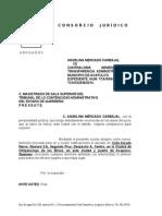 ESCRITOS ANGELINA CHILPO DOM PROCESAL.docx