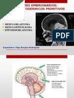 Tumores neuroectodermicos.pptx