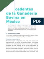 Antecedentes de La Ganadería Bovina en México Reto 4