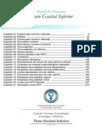 Manual PTGI Indice