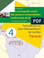 faxinal_metropolitana