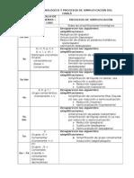 Desarrollo Fonológico y Procesos de Simplificación Del Habla