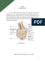 Sistem Knee Joint Anatomi-5