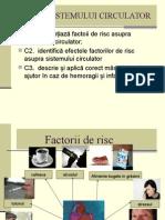 igienasistemuluicirculator