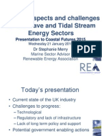Future Prospects And Challenges For The Wave And Tidal Stream Energy Sectors