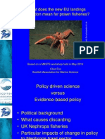What Does The New EU Landings Obligation Mean For Prawn Fisheries?