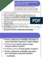 FNP C1 (1)-1