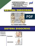 Tema 6 Sistema Endocrino