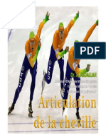 Articulation de la cheville PDF (1).pdf