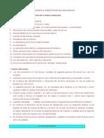 Volante de apoyo rasgos morfosintácticos. 2015.pdf