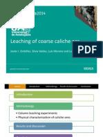Leaching of Coarse Caliche Ore