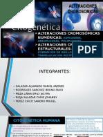 Citogenetica i