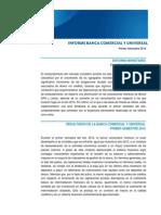 Informe Banca I Sem 2014