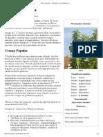 Boldo-De-jardim – Wikipédia, A Enciclopédia Livre