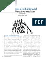 SubsidariedadJ_Mendoza.pdf