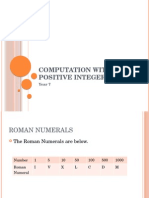 Computing With Positive Integers