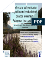 Ecostructure, Self-purification..... of Plankton Systems in Patagonian Rivers and Lakes