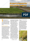 Rice Today Vol. 14, No. 1 a Four Decade Quest to Improve Rice in Latin America and the Caribbean