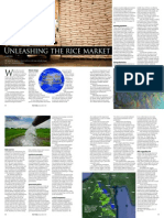 Rice Today Vol. 14, No. 1 Unleashing the Rice Market