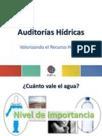 Taller 3 ppt 1 Auditoría Hídrica_Valorizando el Recurso Hídrico.pdf