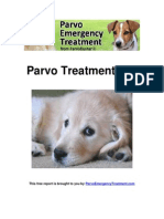 Parvo Treatment 101