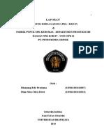 Laporan PKL Petrokimia NPK II