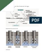 Analisis de Pozos Con Alta Producción de Agua
