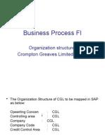 SAP Business Process FI