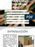 DIAGNOSTICO AMBIENTAL