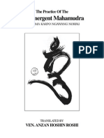 The Practice of Coemergent Mahamudra (IV Drugchen Pema Karpo)