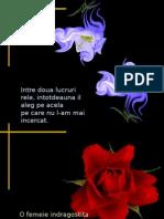 Flori Si Cuvinte Intelepte