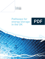 Pathways for Energy Storage in the UK