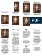 holy face of jesus pamphlet