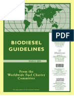 B100 Guideline Final 26Mar09