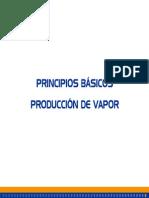 Principios Básicos Producción Vapor