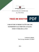 Teza Doctorat Tudor Petrina 2014