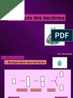4. La Culture Des Bactéries