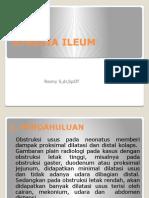Atresia Ileum2
