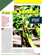 Fim do Bananal?