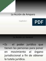 LA ACCION DE AMPARO
