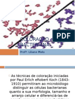 7.Coloração Bacteriana
