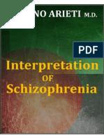 In Te Pre Tation Schizophrenia