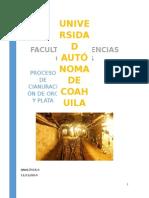 proceso de cianuración de oro y plata.docx