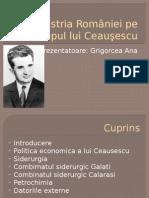Industria României Pe Timpul Lui Ceauşescu