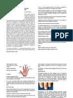 Manual Educativo Para La Aplicacion Profesional de Uñas