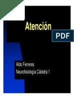 ferreres_teorico_8_atencion_2014.pdf
