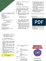 Diabetes Leaflet Ulul