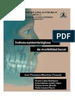 Libro Indices Epidemiologicos