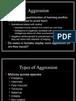 Human Agression